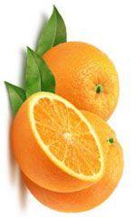 Huile essentielle d'orange - Citrus sinensis