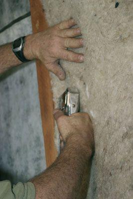 La mite des vêtements et la laine brute