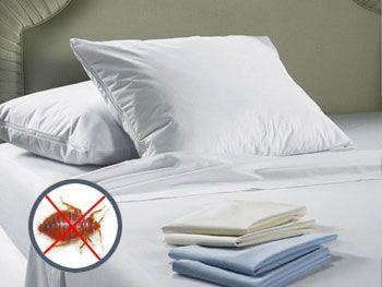 Comment choisir une housse anti punaises de lit penntybio - Punaise de lit reproduction ...