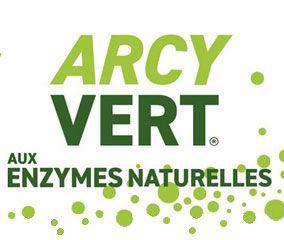 Logo Arcyvert