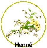 Actifs Henné (Lawsonia inermis)