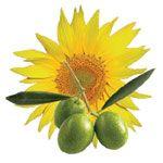 Huiles végétales du roll on Apais'Chaud Direct Nature