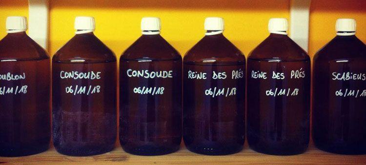 Les ingrédients des cosmétiques Grain